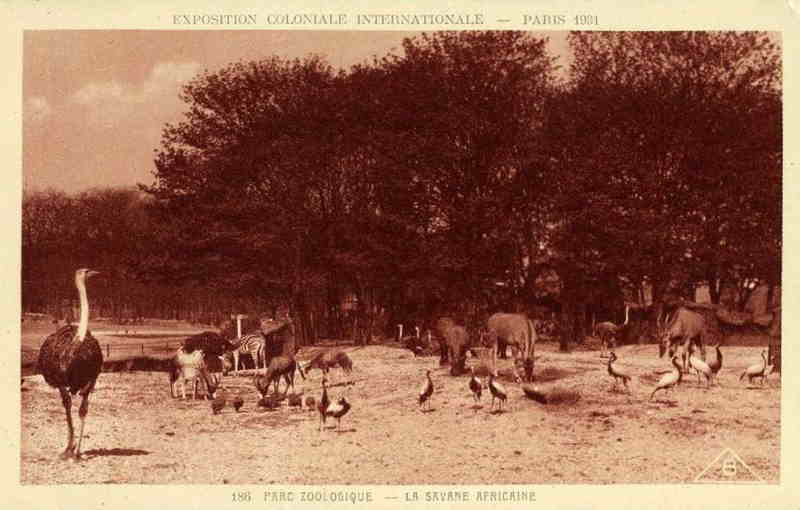 Parc Zoologique de Vincennes - La Savane Africaine - Exposition Coloniale Paris 1931