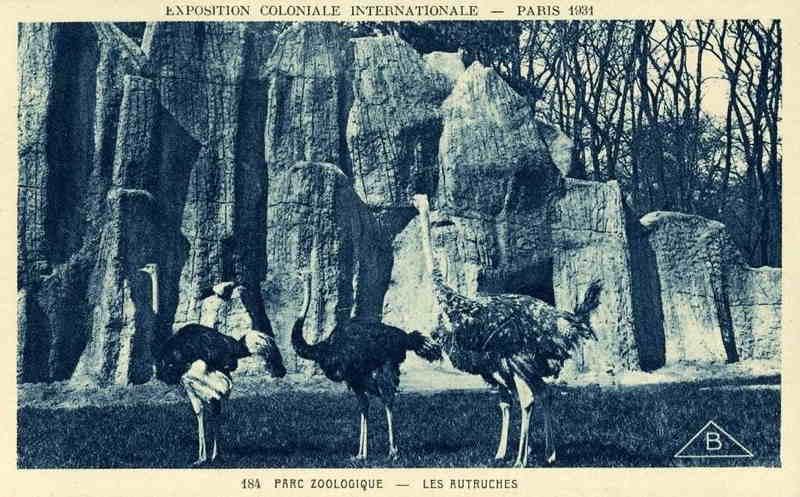 Parc Zoologique de Vincennes - Les Autruches - Exposition Coloniale Paris 1931