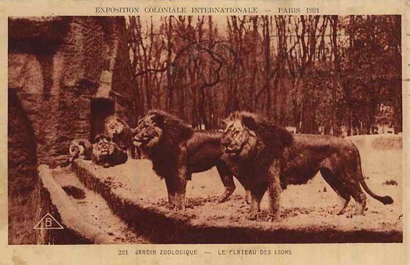 Parc Zoologique de Vincennes - Le Plateau des Lions - Exposition Coloniale Paris 1931